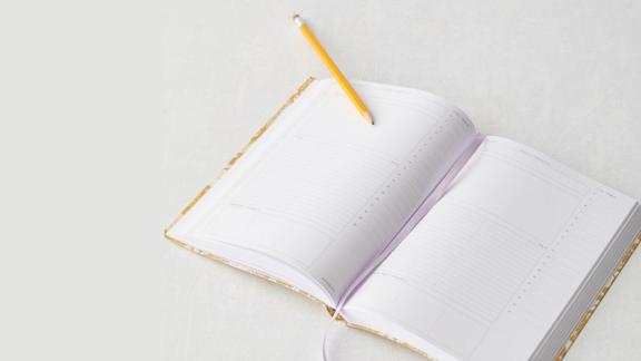 Urban Outfitters Daily Planner Journal
